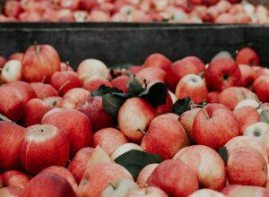 Jabukovo sirće kao prirodni lek